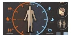 ما هي الساعة البيولوجية في جسم الإنسان