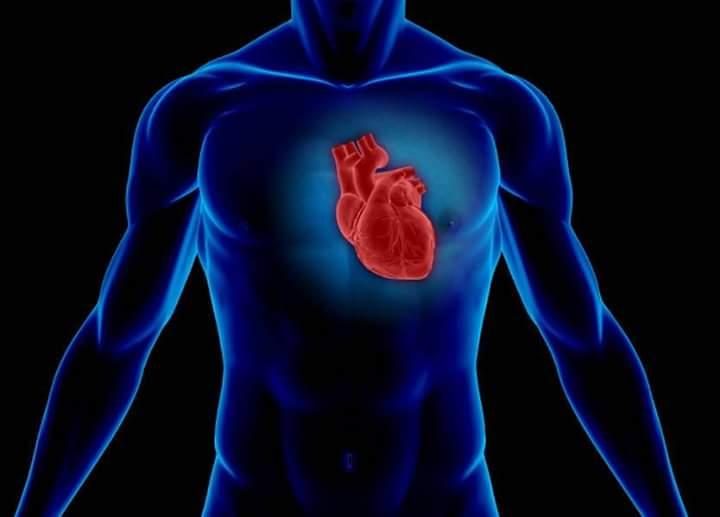 صورة الوقاية من مرض قصور القلب بالخضراوات الورقية والحبوب
