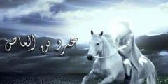 عمرو بن العاص رضي الله عنه