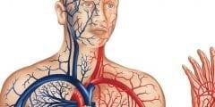 اسباب الهبوط الحاد في الدورة الدموية وعلاجه