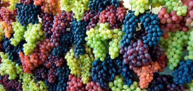 فوائد العنب في الحماية من سرطان القولون