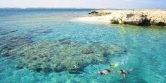 مدينة سفاجا متخصصة في رياضةالغوص و الصيد