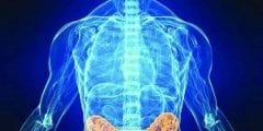 أطعمة للوقاية من سرطان القولون والمستقيم