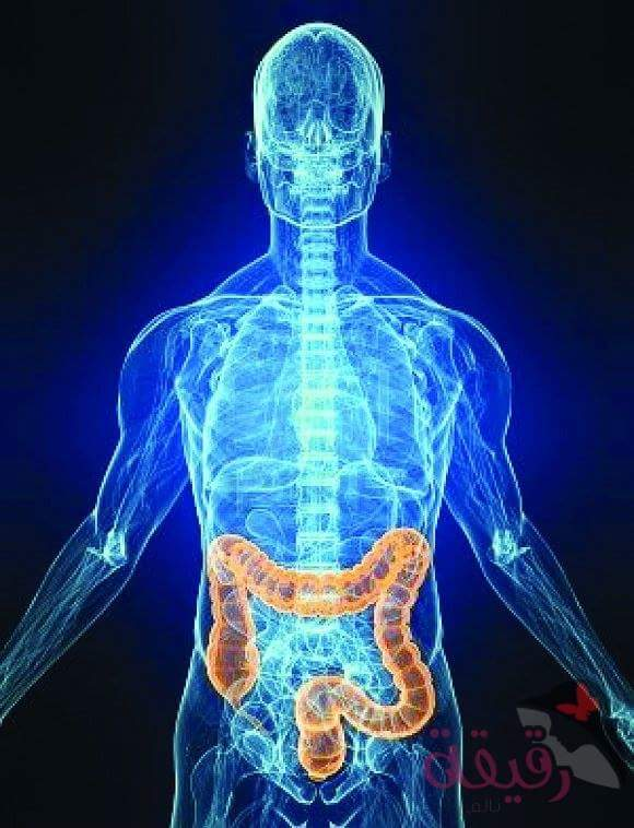 صورة أطعمة للوقاية من سرطان القولون والمستقيم