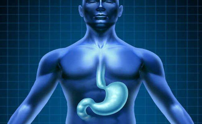 Photo of الاملاح في جسم الانسان
