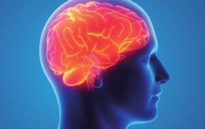 تلف خلايا الدماغ
