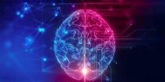 انواع تلف خلايا الدماغ واسبابها وعلاجها