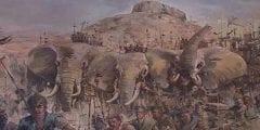 حادثة الفيل