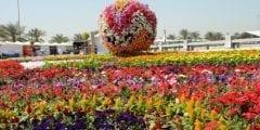 أهداف وفعاليات مهرجان الزهور في المملكة العربية السعودية