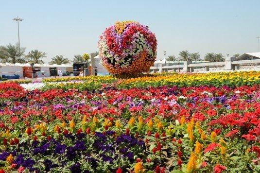 Photo of أهداف وفعاليات مهرجان الزهور في المملكة العربية السعودية