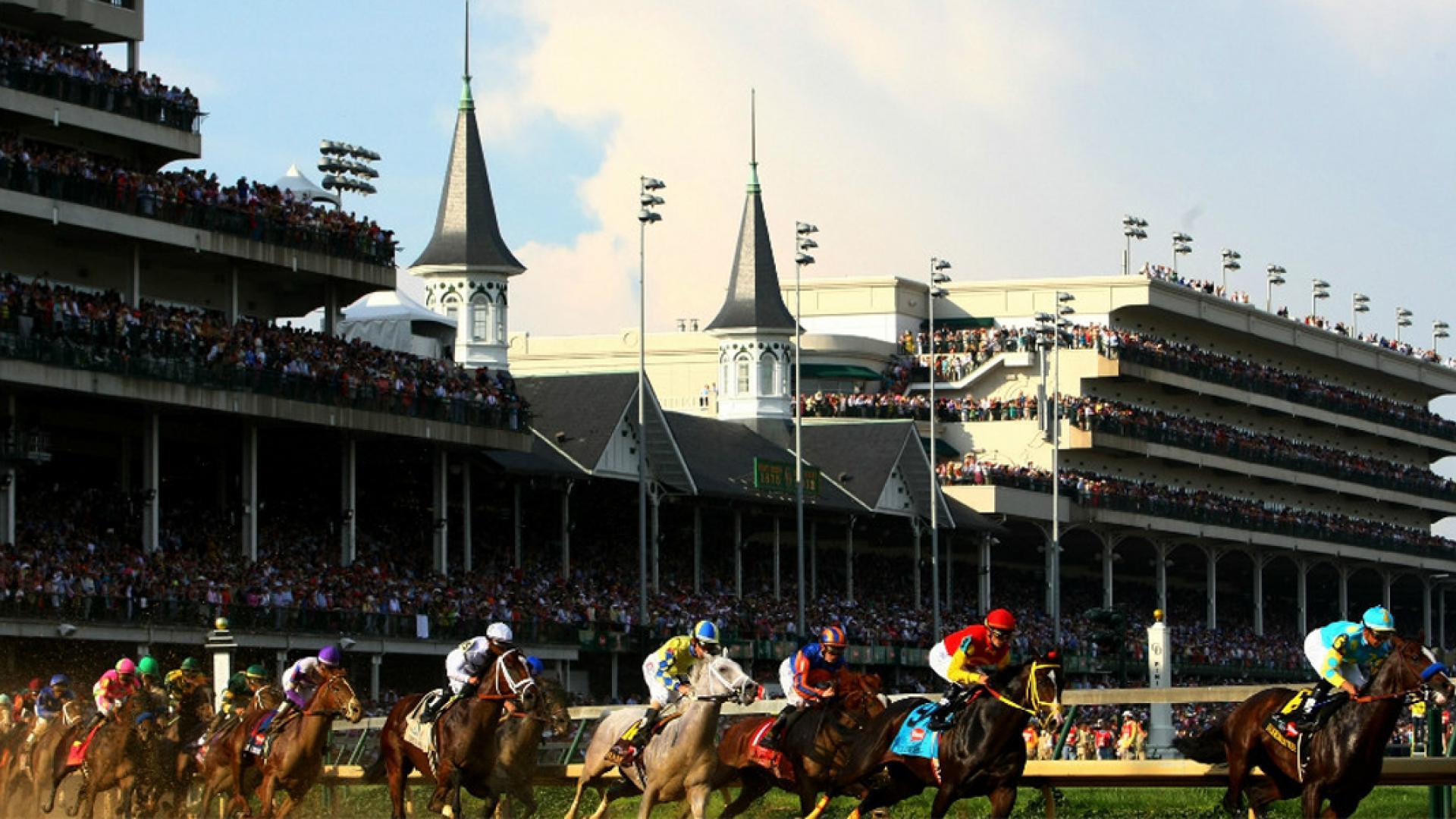 سباقات الخيول