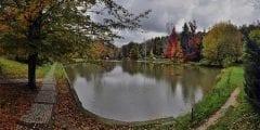 أشهرهم غابات بلغراد .. تعرف على أجمل الغابات حول العالم