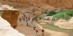 السياحة العلاجية أهم ما يميزيها.. بماذا تشتهر العاصمة التونسية تونس