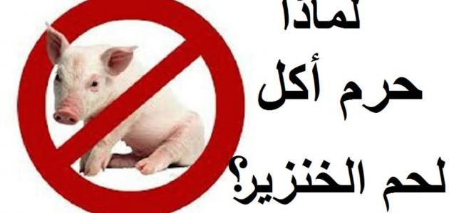 اكل لحم الخنزير