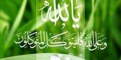 الاسلام دين يدعو الى التواكل