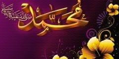 اسباب تعدد زوجات النبي صل الله عليه وسلم