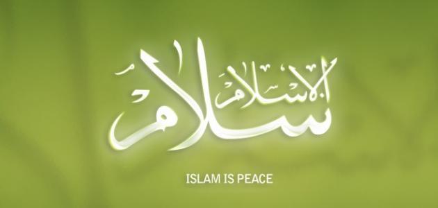 المقاصد الضرورية في الاسلام