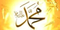 نسب النبي صل الله عليه وسلم واسرته