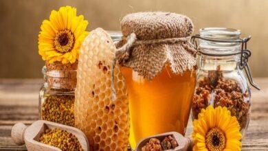 Photo of فوائد شرب الماء الساخن مع العسل على الريق