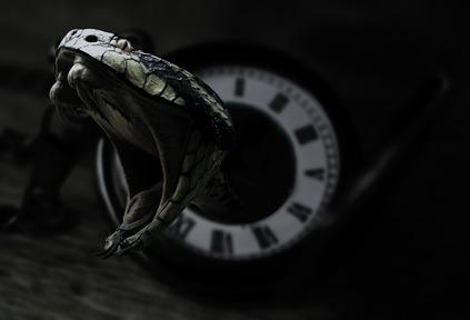 تفسير حلم لدغة الثعبان في اليد
