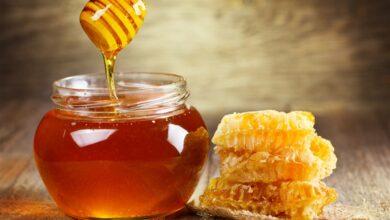 صورة هل العسل يؤثر على الحامل | عسل السدر للحامل