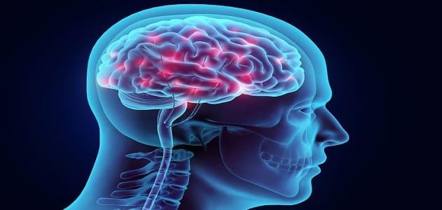 اعراض نقص الاکسجین في الدماغ وعلاج نقص الدم في الدماغ