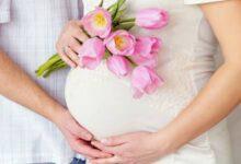 صورة تفسير حلم الحمل للمتزوجه وهي غير حامل لابن سيرين و الأمام الصادق