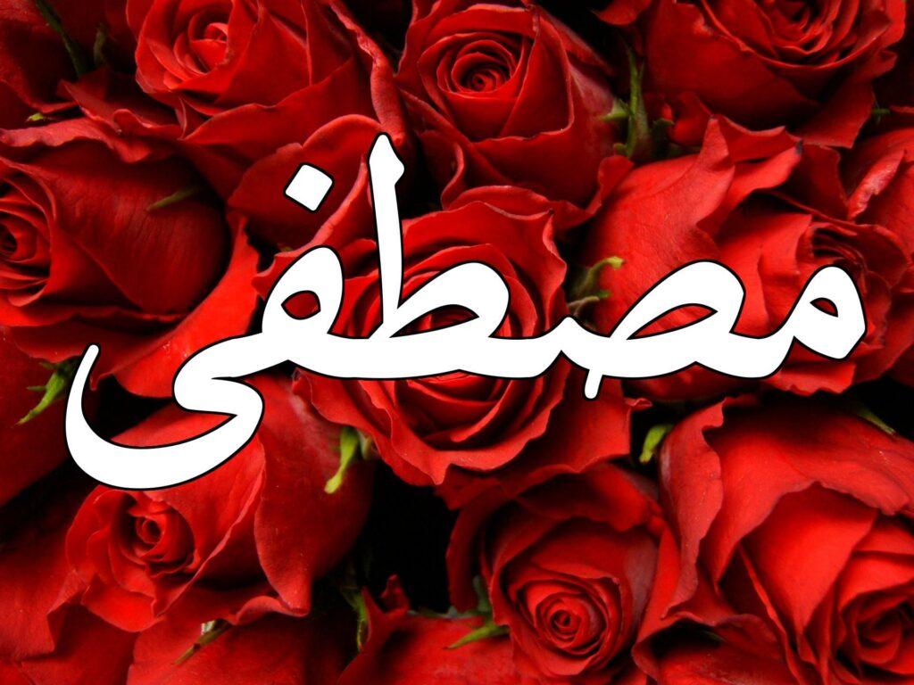 رؤية اسم مصطفى في المنام للمتزوجة والعزباء
