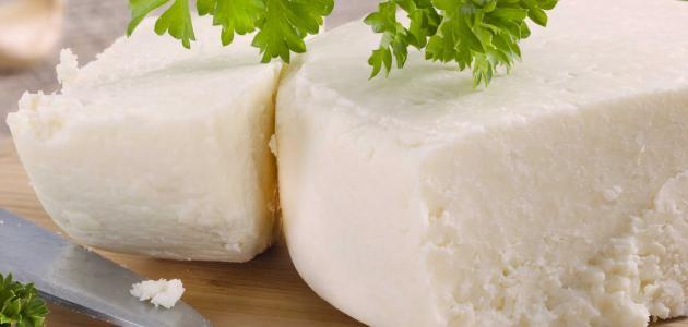السعرات الحرارية في الجبنة البيضاء | فوائد الجبنة البيضاء